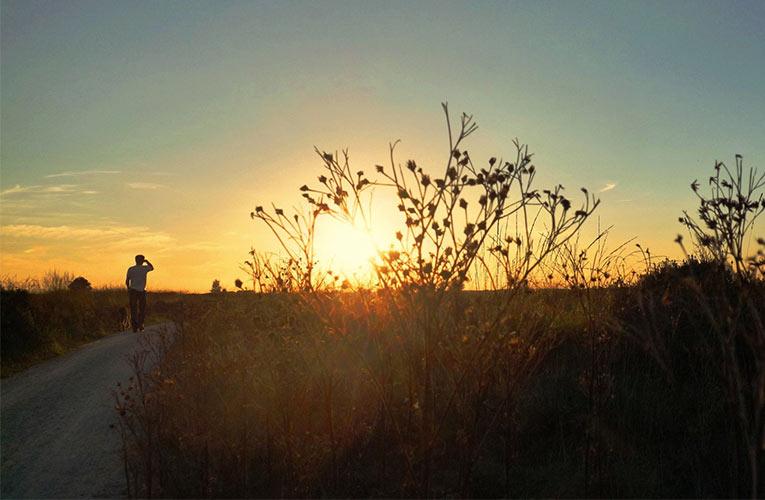 zon onder Fochteloerveen