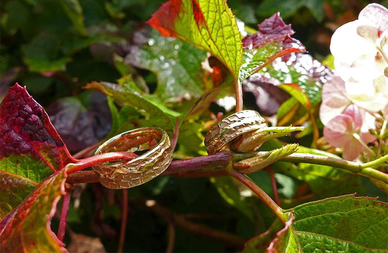 Natuurlijke gouden ringen